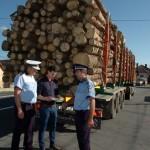 Material lemnos fără acte de proveniență confiscat de polițiștii rutieri la Întregalde