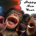Mesaje de Anul Nou 2019 haioase. URARI și FELICITARI amuzante pe care le puteți trimite prietenilor | teiusinfo.ro