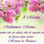MESAJE de ziua MAMEI, 8 MARTIE 2015. Ce urări, SMS-uri şi felicitări emoţionante îi poţi transmite mamei tale | teiusinfo.ro