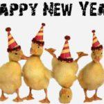MESAJE SMS de Anul Nou 2018 haioase. Urări și Felicitări amuzante pe care le puteți transmite celor dragi | teiusinfo.ro