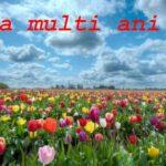 Nume de femei și bărbați care se sărbătoresc de Florii | teiusinfo.ro