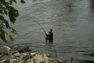 pescar-mures