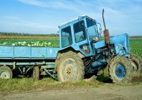 Bărbat de 38 de ani din Galda de Jos cercetat de polițiști, după ce a fost surprins pe DJ 107K conducând un tractor fără a avea permis