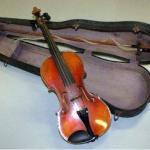 Un adolescent din Teiuș este cercetat pentru furt după ce a sustras o vioară în valoare de 400 de lei